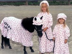 horse costumes for horses | 10 Halloween Costume Ideas for Your Horse [PICTURES]