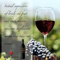 Beyerskloof Soft Summer, Summer Breeze, South African Wine, Wine List, Wines, Red Wine, Drinking, Alcoholic Drinks, Smooth