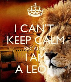 Because I'm a Leo and I have anxiety this is so Perfect!!