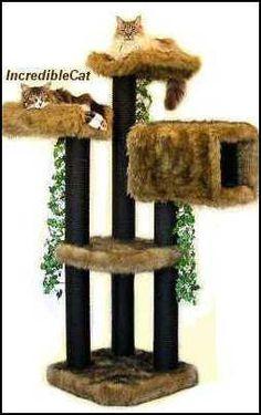 3 High Glenwood Senior Cat Tree Best Cat Bed Designer