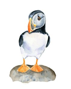 Puffin Watercolor Print- 5 X 7 inch