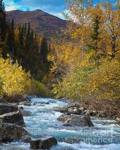 Little Susitna River, Alaska, USA