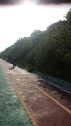 아라마루 산책길