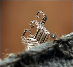 Macro photographs of tiny ice formations by Andrew Osokin