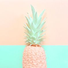 color blocked pineapple