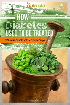 """This plant has been known to help treat and manage the symptoms of diabetes by Indian healers for literally thousands of years, and in fact the Hindi name for the plant, gurmar, translates literally as, """"sugar destroyer."""""""