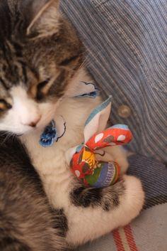 DIY kitten toys!