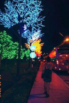 Wonderland. City of light.