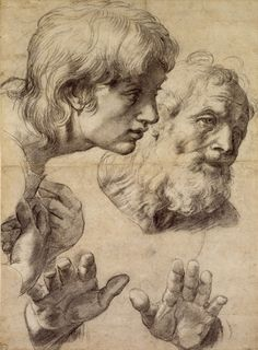 Raphael (Raffaello Sanzio) - Study of heads and hands. Ashmolean Museum, Oxford.