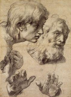Raphael (Raffaello Sanzio) - Study of heads and hands. Ashmolean Museum, Oxford.