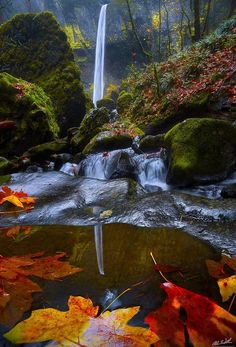 Autumn Reflections by Chris  Williams Exploration Photography on 500px