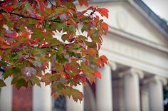 Early fall at Carolina.
