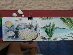 Seashells watercolor sketch