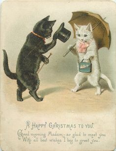 black cat wtih top hat greets white cat with pink bow and purse - vintage postcard