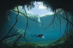 (Photo: Reinhard Dirscherl/Getty Images) Dive Yucatan Cenotes