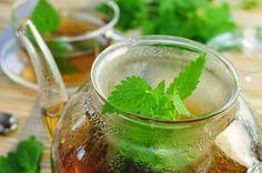 Sirup od koprive: Idealan lijek za čišćenje krvi i super piće http://zdravljeirecepti.blogspot.com/2015/04/sirup-od-koprive-idealan-lijek-za.html