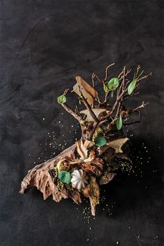 From Atelier Crenn - Walk in the Forest. Burnt pine meringue, pumpernickel soil, mushrooms and herbs sprouting up, crunchy hazelnuts like rocks underfoot.