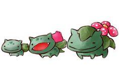 Bulbasaur, Ivysaur and Venusaur Pokemon Pins, Pokemon Fan Art, Cute Pokemon, Pokemon Stuff, Bulbasaur Evolution, Grass Type Pokemon, Pokemon Starters, Original Pokemon, Pikachu