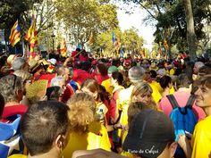 Diada Nacional de Catalunya 11-09-2014 1.800.000 catalans fan història. Tram 20