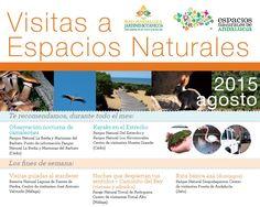Cartel de actividades destacadas para el mes de agosto en los Espacios Naturales Protegidos de Andalucía.