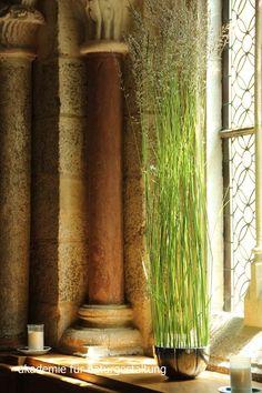 Akademie für Naturgestaltung Floral Arrangements, Floral Design, Curtains, Beijing, Inspiration, Weave, Home Decor, Sodas, Flowers