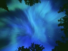 Algonquin Provincial Park in Ontario, Canada.  You will also be able to view The Northern Lights here.