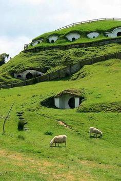 Foto: NUOVA ZELANDA 💝 Le case degli hobbit.. Sono prefabbricati ecologici a basso consumo ma con tutti i comfort, si costruiscono in tre giorni con il tetto verde, hanno pensato di farli come alloggi turistici... Pensavo che esistevano solo nel Signore degli anelli ihih 😊😊👍
