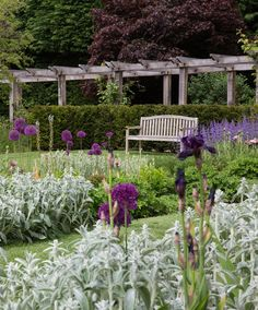 Longview Design believe a strong narrative is key to delivering beautiful gardens.