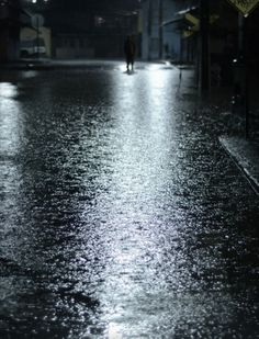 """papirruki en la inundacion"" (Lota) - foto:g. medina Parra"