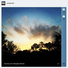 Embed Instagram photos or videos on your Web site via @CNET