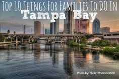 """Top Ten Things To Do in Tampa Bay for Families. This beautiful waterfront city has so much to offer families, including fabulous year-round weather, world-class animal attractions, and gorgeous views from water to wildlife. Tampa Bay is considered a """"hid Tampa Florida, Florida Vacation, Florida Travel, Florida Beaches, Tampa Bay, Apollo Beach Florida, Usa Roadtrip, Family Vacation Destinations, Best Vacations"""