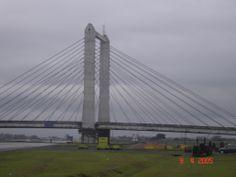 Ponte estaiada rod imigrantes, SP, SP, Brasil