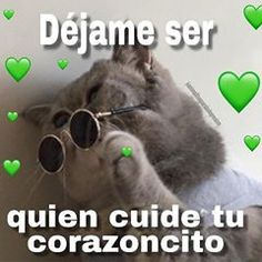 Romantic Humor, Memes Lindos, Dankest Memes, Funny Memes, Cheesy Quotes, Response Memes, Cute Love Memes, Cute Disney Wallpaper, Love Phrases