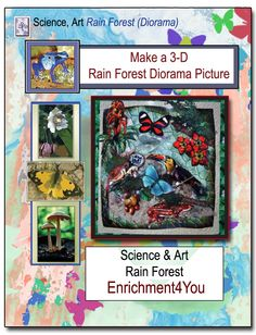 Make a 3-D Rainforest Diorama Picture - Enrichment4You | CurrClick