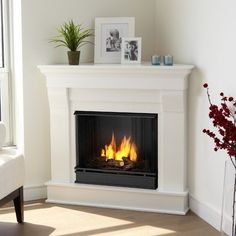 Chateau Corner Gel Fuel Fireplace Finish: White