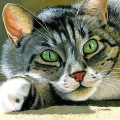Realistic Custom 12x12 Painting of your Favorite Cat by LNeuman2, $265.00: