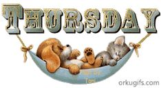 Thursday Images for social networks Thursday Gif, Thursday Greetings, Thursday Pictures, Good Morning Thursday, Thursday Humor, Good Morning Gif, Good Morning Messages, Happy Thursday, Sunday