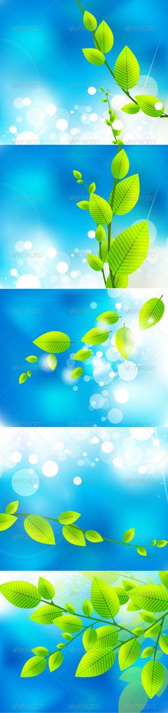 Realistic Graphic DOWNLOAD (.ai, .psd) :: http://vector-graphic.de/pinterest-itmid-1002388457i.html ... Vector Green Tender Leaves ...  background, blue, flare, green, nature, sky, spring, summer, sun, white  ... Realistic Photo Graphic Print Obejct Business Web Elements Illustration Design Templates ... DOWNLOAD :: http://vector-graphic.de/pinterest-itmid-1002388457i.html