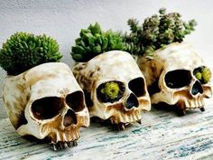 DIY Flower Skull Decor