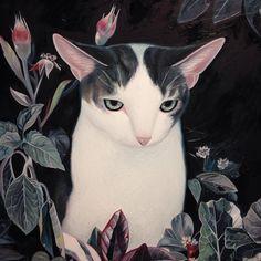 by Joanne Nam