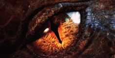 Movie Review - The Hobbit: The Desolation Of Smaug