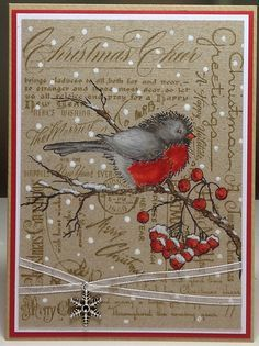 stampendous stamp>snow bird - Google Search