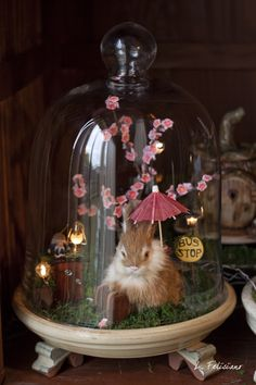 life in a bell jar