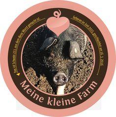 Schwein 221