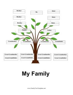 4 Generation Family Tree With Siblings Set Against A Beautiful Green Sprout
