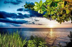 "Repost from Instagram ! #WeLike ! #Madinina by @kanigwe ""Une fin de journée pluvieuse  #landscape #landscapes #landscape_captures #sea #caribbean #caribbeansea #caribbeanlife #martinique #madinina #ig_daily #ig_sky #clouds #sky #sunset #sunsetlovers #sun #endoftheday #blue #green #photooftheday #shotoftheday #ig_caribbean #ig_martinique"" http://ift.tt/1qsMdDk"