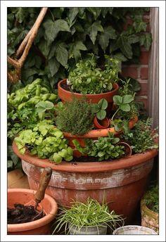 Mijn kruidentuintje... Gewoon wat potten stapelen en kruiden planten of zaaien. Lekker in het zonnetje bij de achterdeur... :-)