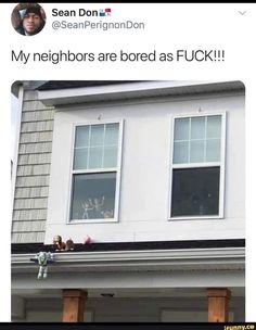 Legends, your neighbours are legends Really Funny Memes, Funny Love, Stupid Funny Memes, Funny Relatable Memes, Haha Funny, Funny Posts, Hilarious, Funniest Memes, Top Funny