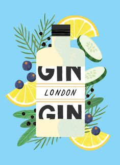 illustration, gin, drawn, colour
