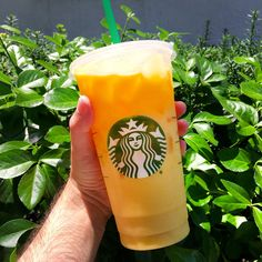 """Orange drink"""